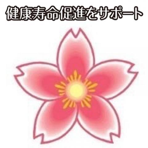 カラダ・リセットSAKURA